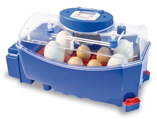Incubadora 8 huevos digital automática